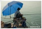 gandia201415