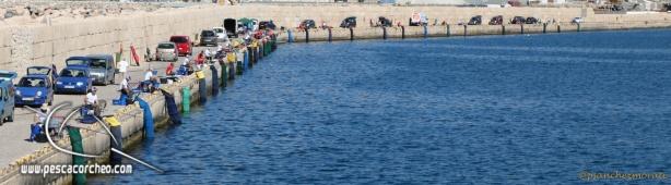 Colmic-Mar de Alboran-42