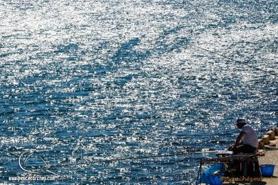 Colmic-Mar de Alboran-55
