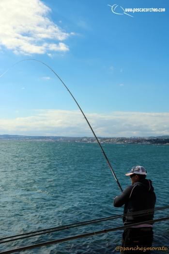 lances pescacorcheo 09