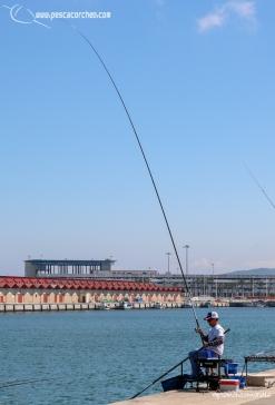 Andaluz 1 pescacorcheo - 27