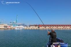 Andaluz 1 pescacorcheo - 33