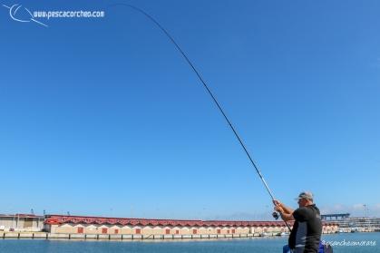 Andaluz 1 pescacorcheo - 34
