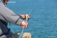 Andaluz 1 pescacorcheo - 39