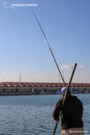 Andaluz 2 pescacorcheo - 16